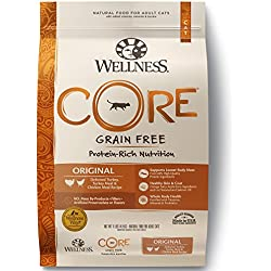Wellness CORE Grain Free Original Turkey & Chicken Natural Dry Cat Food, 11-Pound Bag