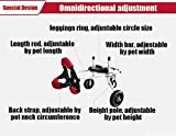 Dog Wheelchair,Pet cart,Suitable for Big Small Dogs Cat Puppy Hind Legs Rehabilitation Handicapped Disabled Paralysis Injured Assist Walking,Adjustable,2 Wheels,1kg (2.2lbs)—50kg (110lbs) Pound