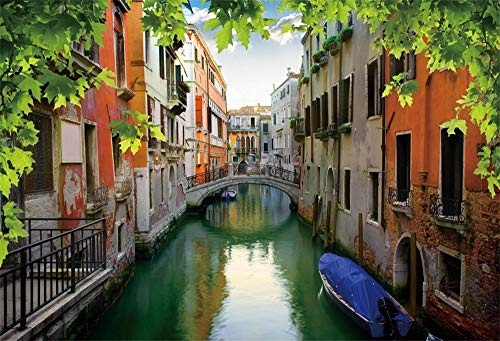 OFILA Italy Venice Backdrop 9x6ft Gondola Italian Palazzo Canal Lagoon Bridging Channel Ancient Buildings Watertown Background Adult Travel Themed Party Decoration Digital Photos Video Props