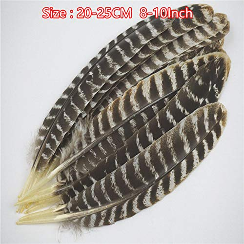 Pukido Real Natural Eagle feathers 16-18 Inch(20-40CM) for sale  Delivered anywhere in Canada