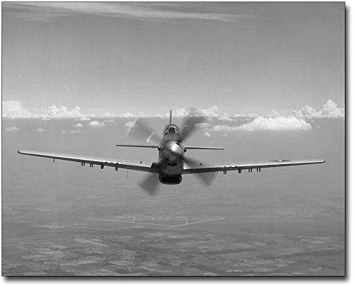P-51 / P-51D Mustang WWII Aircraft 8x10 Silver Halide Photo (P-51d Mustang Pictures)