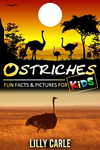 Ostrich Farm (Ostriches: Fun Facts & Pictures For)