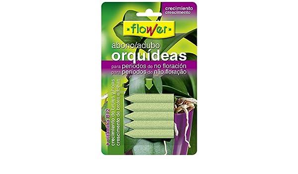 Flower 10840 - Abono Clavos orquídeas Blister, 5 Unidades: Amazon.es: Jardín