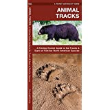 Animal Tracks: A Folding Pocket Guide to the Tracks & Signs of Familiar North American Species (A Pocket Naturalist Guide)