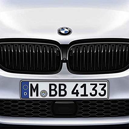 Front Kidney Grille Grill for BMW G30 G31 G38 5 Series 525i 530i 540i 550i with M-Performance Black Kidney Grill GLOSS BLACK
