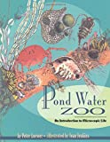 Pond Water Zoo: An Introduction to Microscopic Life