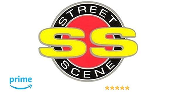 Street Scene 950-78725 Speed Grille Bumper//Valance Grille Insert 95078725
