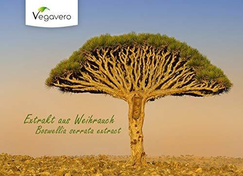 Extracto de BOSWELLIA serrata 200 mg, 65% de ácidos boswellic, vegano, 120 comprimidos: Amazon.es: Salud y cuidado personal