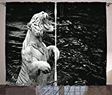 Cheap Ambesonne Safari Decor Curtains, Picture of A White Tiger Standing in Water Beast Exotic Roaring Cruel Unique, Living Room Bedroom Decor, 2 Panel Set, 108 W X 84 L Inches