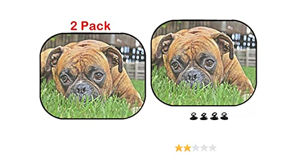 Luxlady Car Sun Shade Protector Block Damaging UV Rays Sunlight Heat for All Vehicles 2 Pack Image ID 30889265 Pure bred Boxer Dog Portrait Close up on Natural Background
