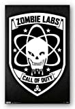(22x34) Call of Duty: Black Ops Zombie Labs Video Game Poster Print