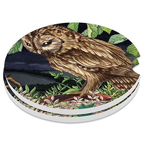 Car Coasters Pack of 2, Small 2.56 Stone Car Cupholder Absorbent Coaster Set for Women Men Drink Cup Holder Coasters (Cute Owl)