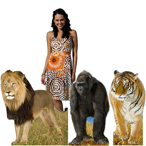 Jungle Animal Cutout Set Safari Party Props (Out Standee Cut)