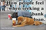 BANK LOAN-- 1 Large, funny fridge magnet, 4x6 inches (10.16 x 15.24 cm), meme decorative magnetic sign plaque, EVERYMAN AND HIS DOG SEEK FINANCIAL ASSISTANCE