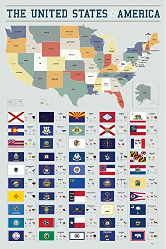 Pop Chart Lab PA3-USA 50 Flags of The United States of America by Manhattan & Ash Poster Print, 24 x 36, Multicolored, Multi