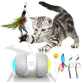 k-berho Cat Toys Interactive, Cat Toys for Indoor with Feather,Ball,Mouse and 2 Color Ribbons,Automatic Cat Toy with Irregular USB Charging 360 Degree Self Rotating Ball