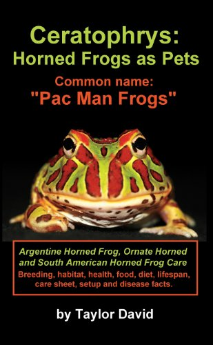 Ceratophrys: Horned Frogs as Pets: Common name: Pac Man (Common Frog)