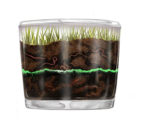 Nature Gift Store Kids Worm Farm Observation Kit SHIPPED WITH Live Worms