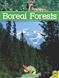 Boreal Forests, Patricia Miller-Schroeder, 1616906480