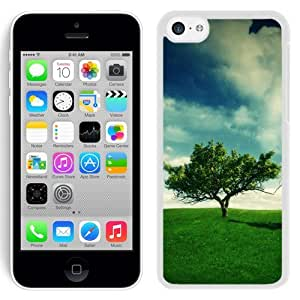 New Beautiful Custom Designed Cover Case For iPhone 5C With Summer Landscape (2) Phone Case