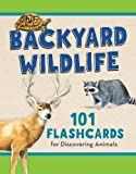 img - for Backyard Wildlife: 101 Flashcards for Discovering Animals book / textbook / text book