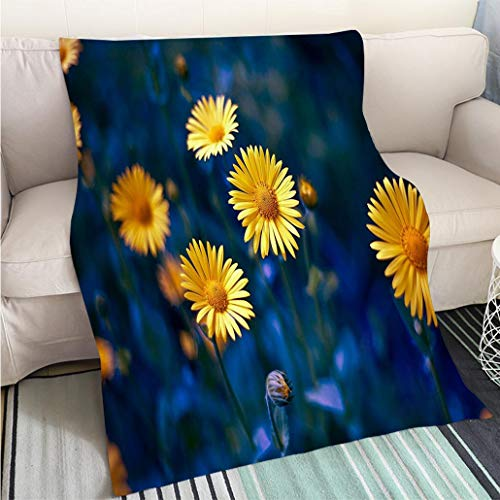 BEICICI Super Soft Throw Thicken Blanket Camomile chamomel Daisy Chain Wheel an Aromatic European Plant of Living Room/Bedroom Warm Blanket
