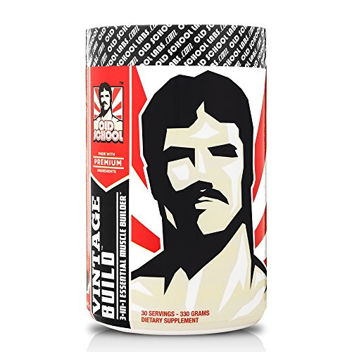 VINTAGE BUILD Post Workout BCAA, Creatine, L-Glutamine - The Essential 3-in-1 Muscle Building Recovery Powder for Men and Women (Fresh Berries), 330 Grams, 30 Servings