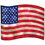 LIGHTED USA FLAG INDOOR/OUTDOOR DECORATION