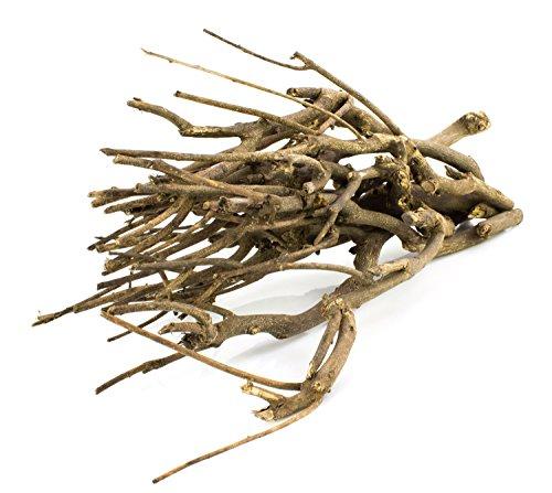Wildholz-Zweige MANDY im bund, beige-braun, 40 cm - Dekozweig / Dekobündel - monsterkatz