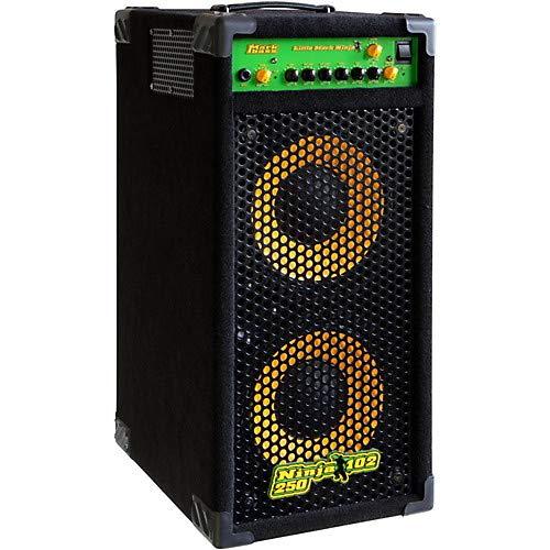 (Ninja 102 250 Richard Bona Signature 250W 2x10 Bass Combo Amp)