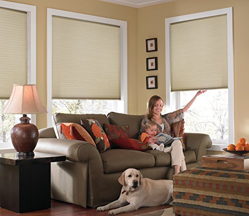Windowsandgarden Custom Cordless Single Cell Shades, 39W x 53H, Ivory Beige, Any Size 21-72 Wide and 24-72 - Cellular Single Cell Shades