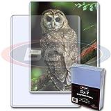BCW 25 St/ück 12,7 x 17,8 cm Foto Postkarte starrer Hartplastik Toploader-Halter Toploaders 5 x 7