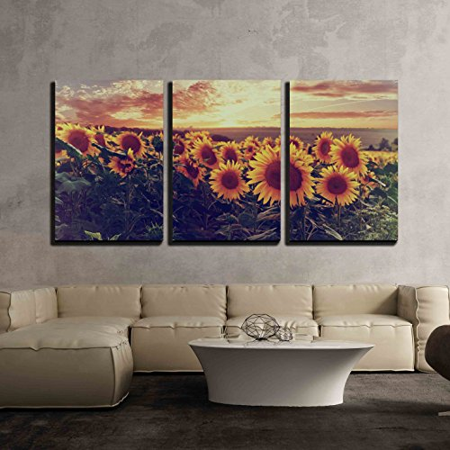 Summer landscape with colorful sunset over sunflowers field vintage style x3 Panels