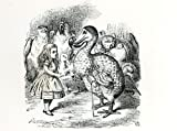 John Tenniel Alice meets the Dodo, illustration from Alices Adventures in Won...