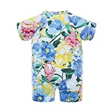 BIG ELEPHANT Baby Girls'2 Piece Summer Short Sleeve