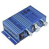 Toworld18 Mini Hi-Fi Audio Mono Amplifier for Car Motorcycle Boat Home TELI-A6