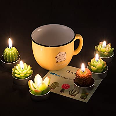 Giveme5 Succulent Cactus Tealight Candles, Handmade Delicate Succulent Scented Cactus Candles Perfect Valentine's, Birthday Party,Wedding, Spa, Home Decor (6 Pcs): Toys & Games