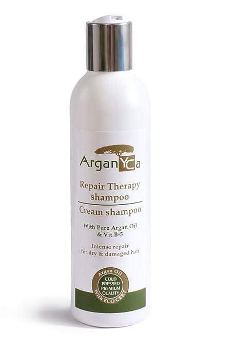 Champú – Intensivo Cuidado Para & geschädigtes con cabello seco arganöl & Vitamina B de 5