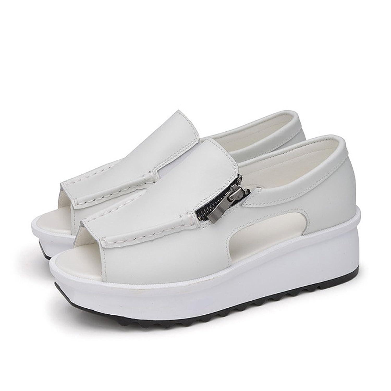 Jacky's Fashion Sneakers ユニセックスアダルト B07CG9XFC2