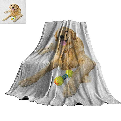 (RenteriaDecor Golden Retriever,Baby Blanket Pet Dog Laying Down with Toy Friendly Domestic Puppy Playful Companion Lightweight Plush Throws 70