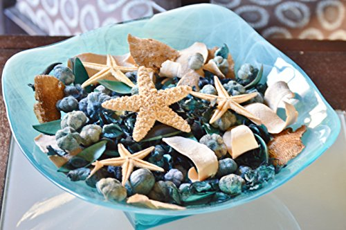 Manu Home Seashore Potpourri Bag ~ Large 18oz Bag with Natural Botanicals & Starfish ~ Beautiful Ocean Breeze Scent ~ Perfect for Any Ocean Decor~ Great Spring/Summer colors~ (Seashell Potpourri)