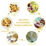 ZJchao 24K Gold Rose for Her, Dipped Gold Rose