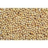 Whole Yellow Mustard Seeds - 24 oz