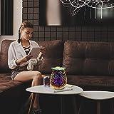 EQUSUPRO 3D Glass Electric Wax Melt Warmer Wax