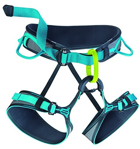 EDELRID - Jay II Climbing Harness, Slate/Icemint, Medium by EDELRID (Edelrid Jay Climbing Harness compare prices)