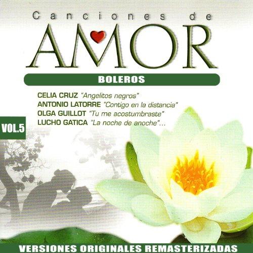 ... Canciones De Amor Vol. 5: Boleros