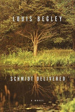 book cover of Schmidt Delivered