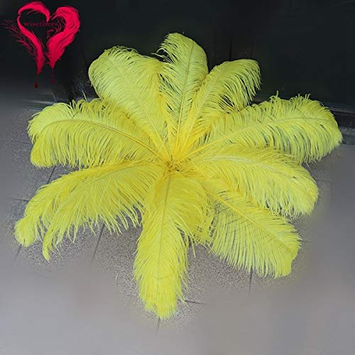Maslin 20 PCS/Lot Beautiful 60-65 cm Fluffy Colored Long Curly Natural Ostrich Feather Centerpiece Wedding Home DIY Decoration 9 Colors - (Color: Yellow, Size: 60-65 cm)