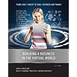 Building a Business in the Virtual World (Young Adult Library of Small Business an)