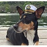 Commanding Officer naval hat for medium sized dogs